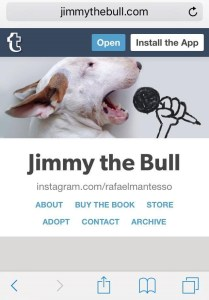 In the book, Mantesso presents a definitive selection of new and classic images of Jimmy and includes the backstory of how the two became such great collaborators. As heartwarming as it is hilarious, A Dog Named Jimmy will delight animal lovers everywhere. www.jimmythebull.com