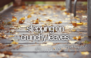 Welcome November.... Start to feel more like winter in Greece... But still , there are so many things that we love about Autumn .... like stepping on crunchy leaves.