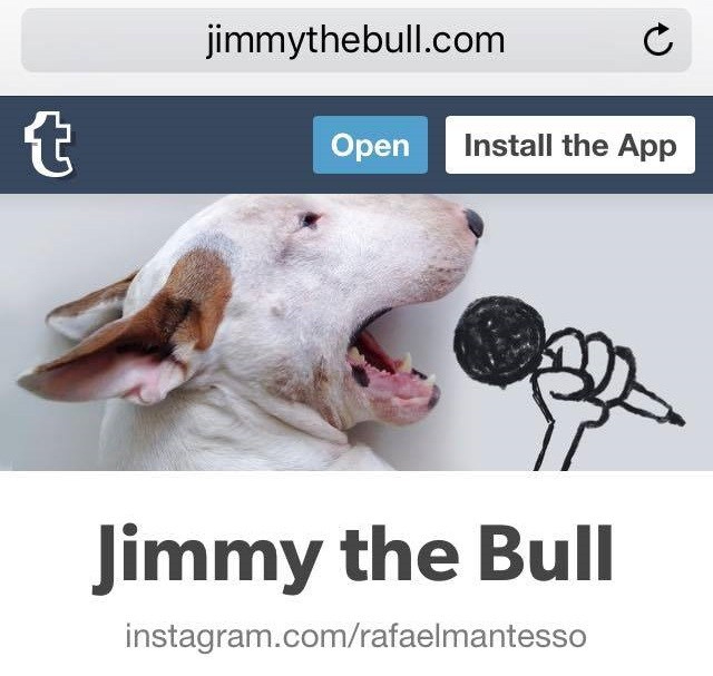 A Dog Named Jimmy