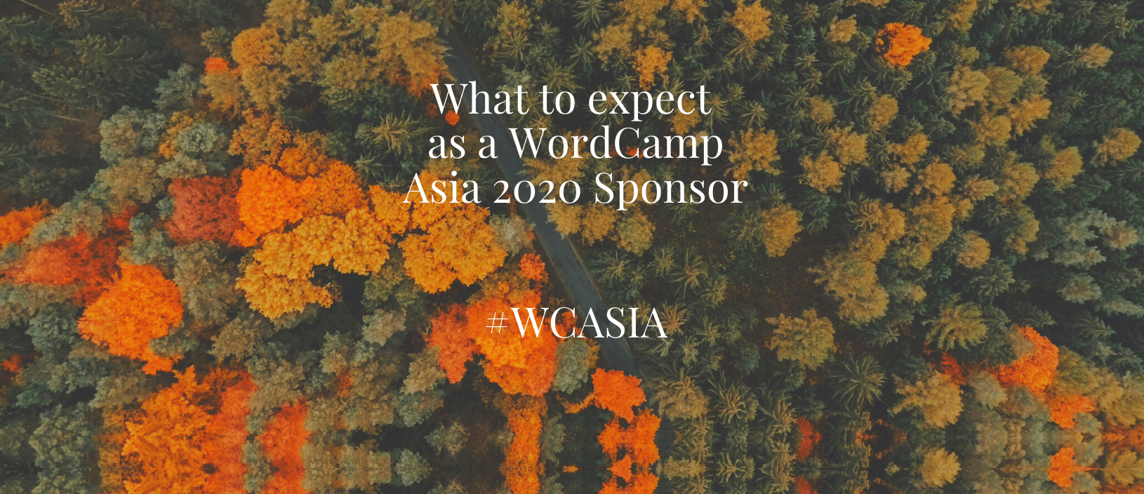 What to expect as a WordCamp Asia 2020 Sponsor #WCASIA