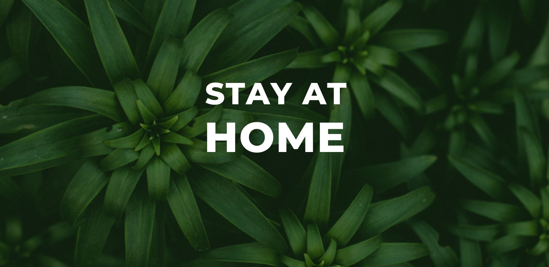 Stay at Home is an Act of Kindness