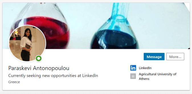 Paraskevi Antonopoulou LinkedIn