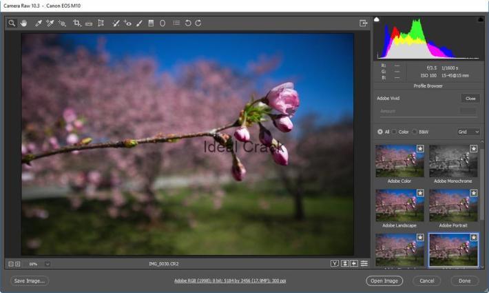 Adobe Photoshop CC 2019 20.0.6 Crack With License Key