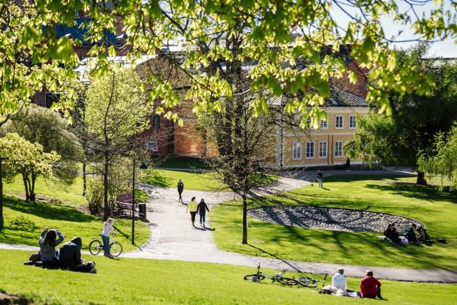 Koffin puisto Kuva: Kuvio, Helsinki Marketing