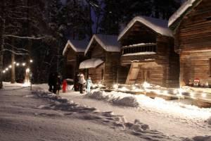 Seurasaari Christmas Path.