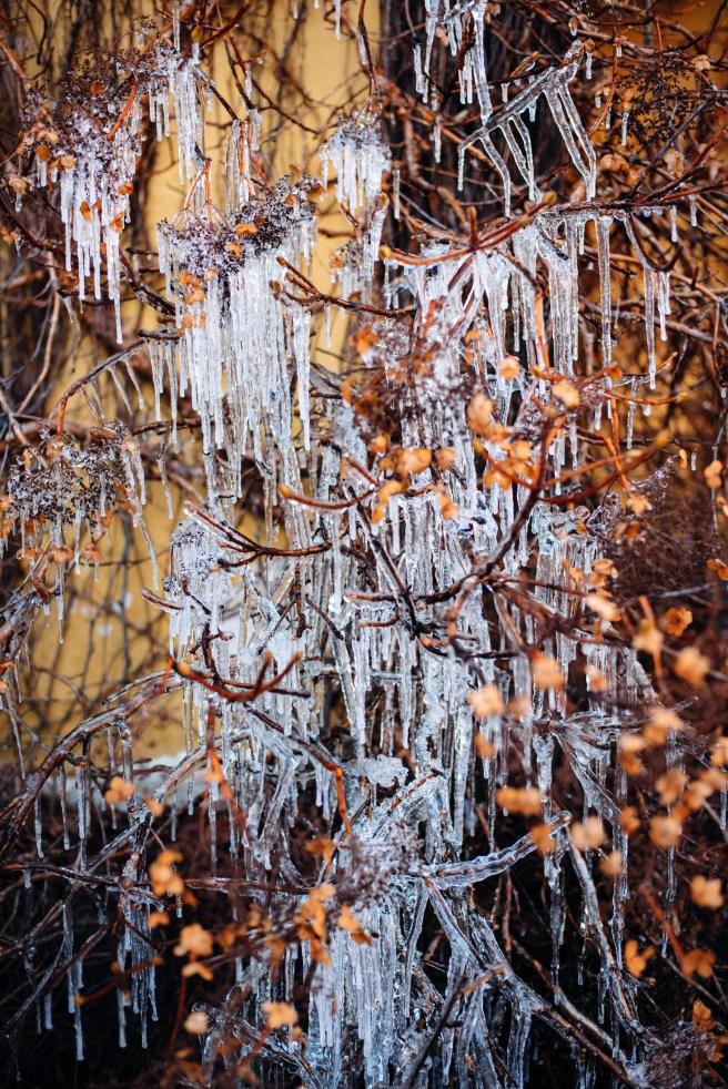 Winter in Finland. Image: Jussi Hellsten / Helsinki Marketing