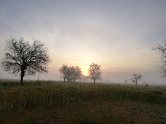 amazing sunrise pictures
