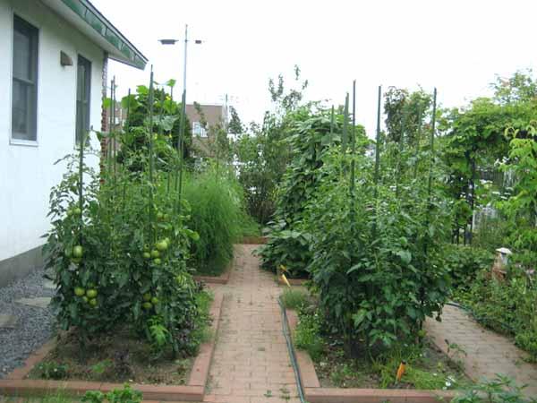 花园和花园的设计让自己的照片