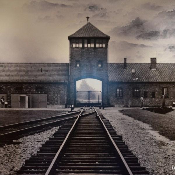 El ingreso a Auschwitz