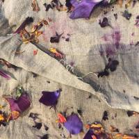 Natural Dyeing with Cara Marie Piazza