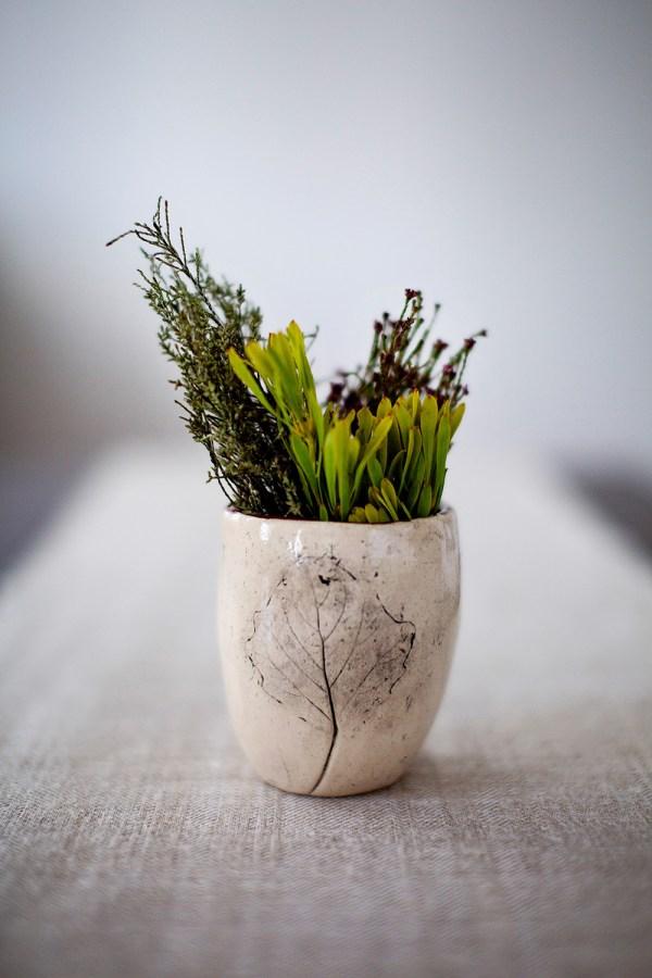plant cup ubi
