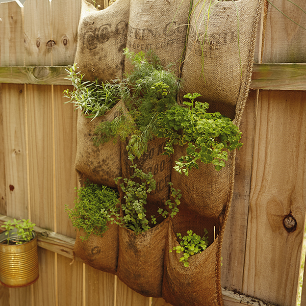 DIY Vertical Herb Garden Hallmark Ideas Amp Inspiration