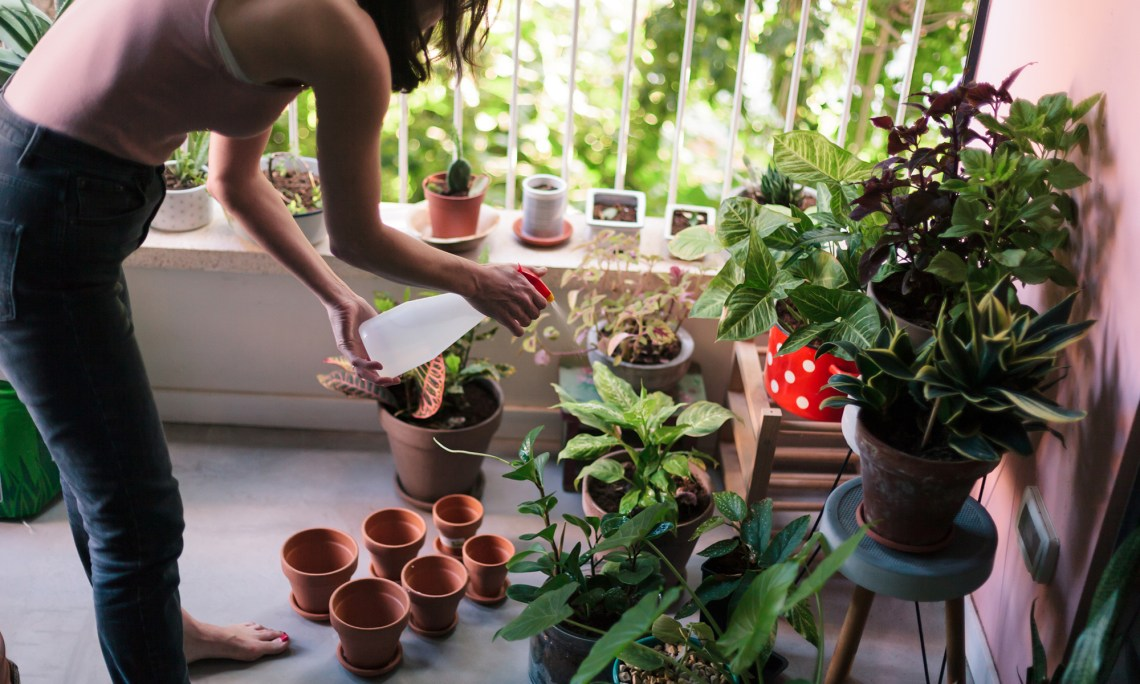 Want To Grow Your Own Food 9 Tips To Help You Get Started