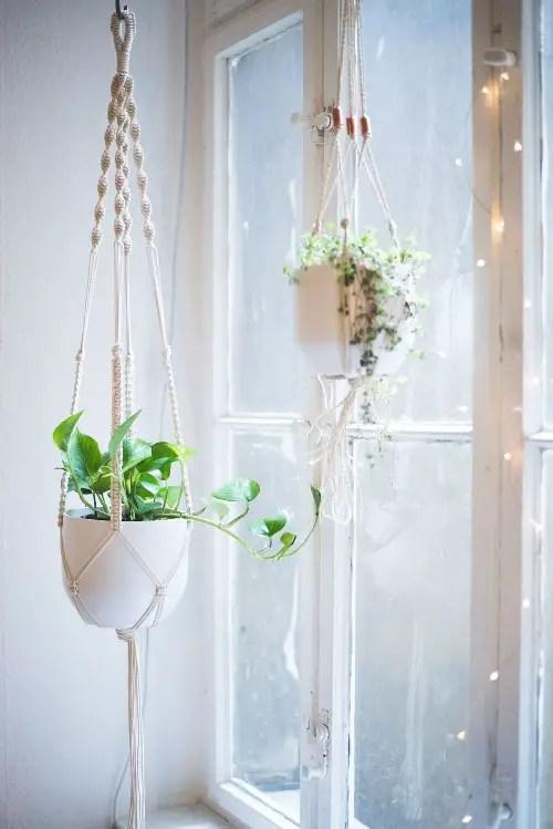 Indoor Hanging Window Planter