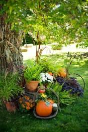 Fall+garden