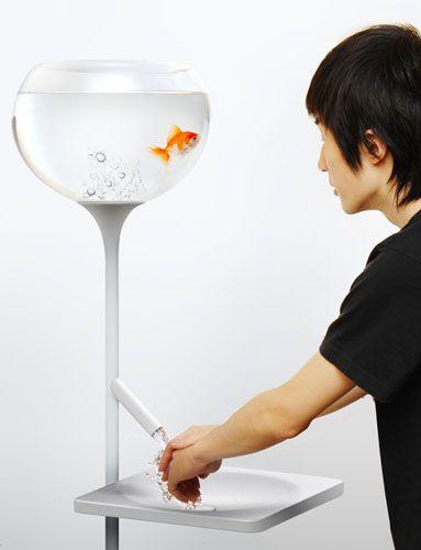 Poor little fish