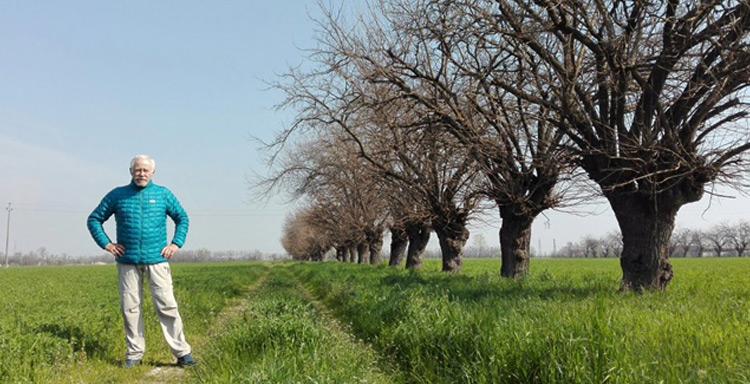 20c-marzo-caminantes-mediapost-ideas-imprescindibles