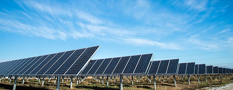 Adoptar medidas urgentes para combatir el cambio climático y sus efectos