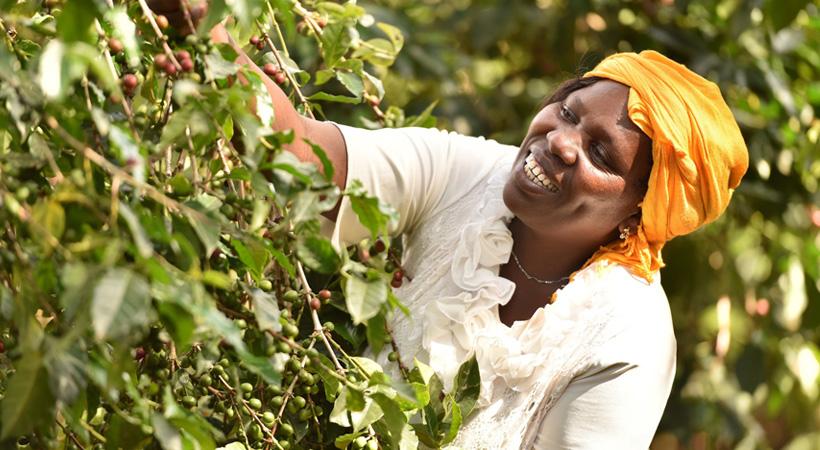 fairtrade-comercio-justo-desarrollo-sostenible