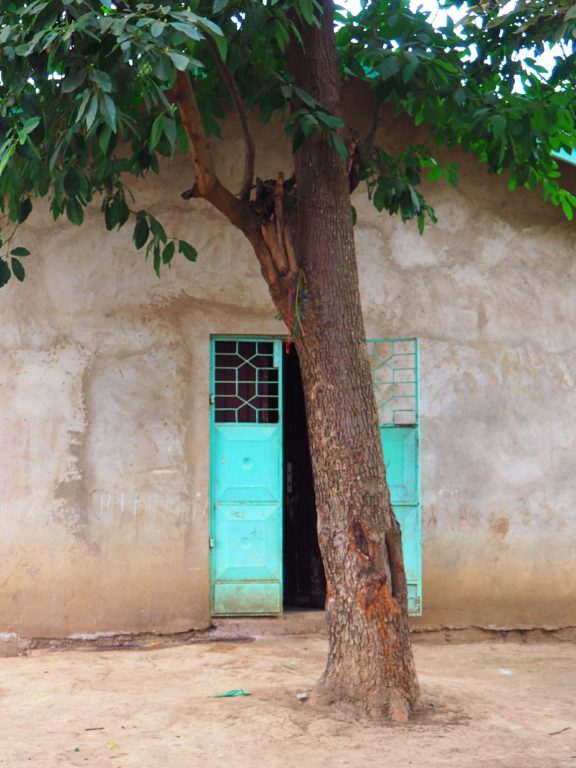 A neighbor's house in Arusha - I was in love with the turquoise door