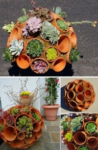Outdoor Succulent Garden Creative Indoor And Outdoor