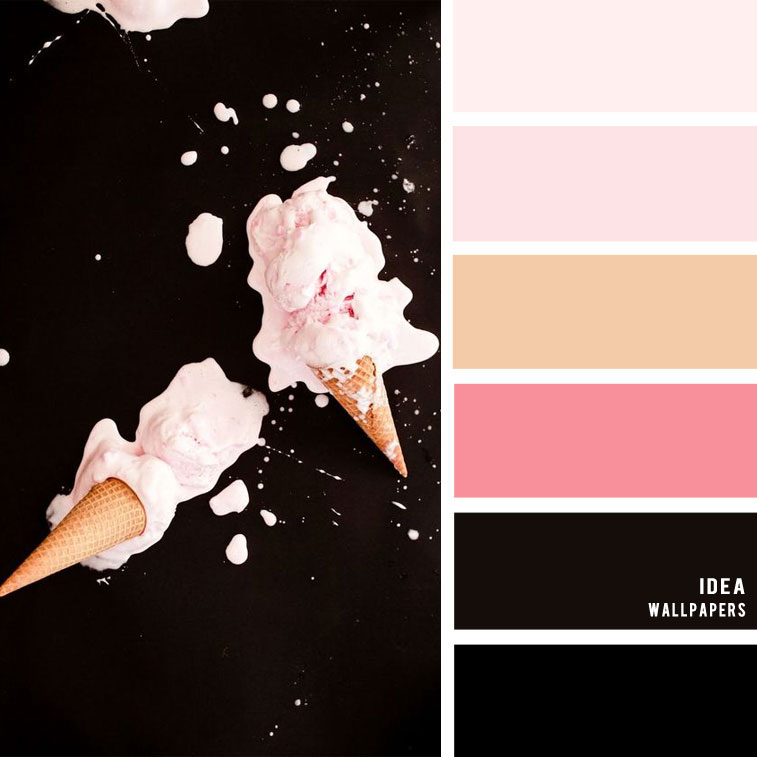 19 The Perfect Pink Color Combinations { Blush and Black}, blush color palette, black and blush colour palette #color #colorpalette