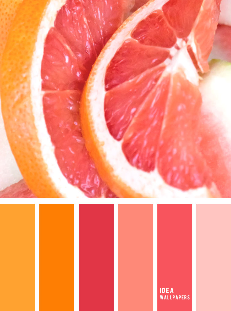 Pink citrus inspired color palette, pink and orange palette #color #colorpalette