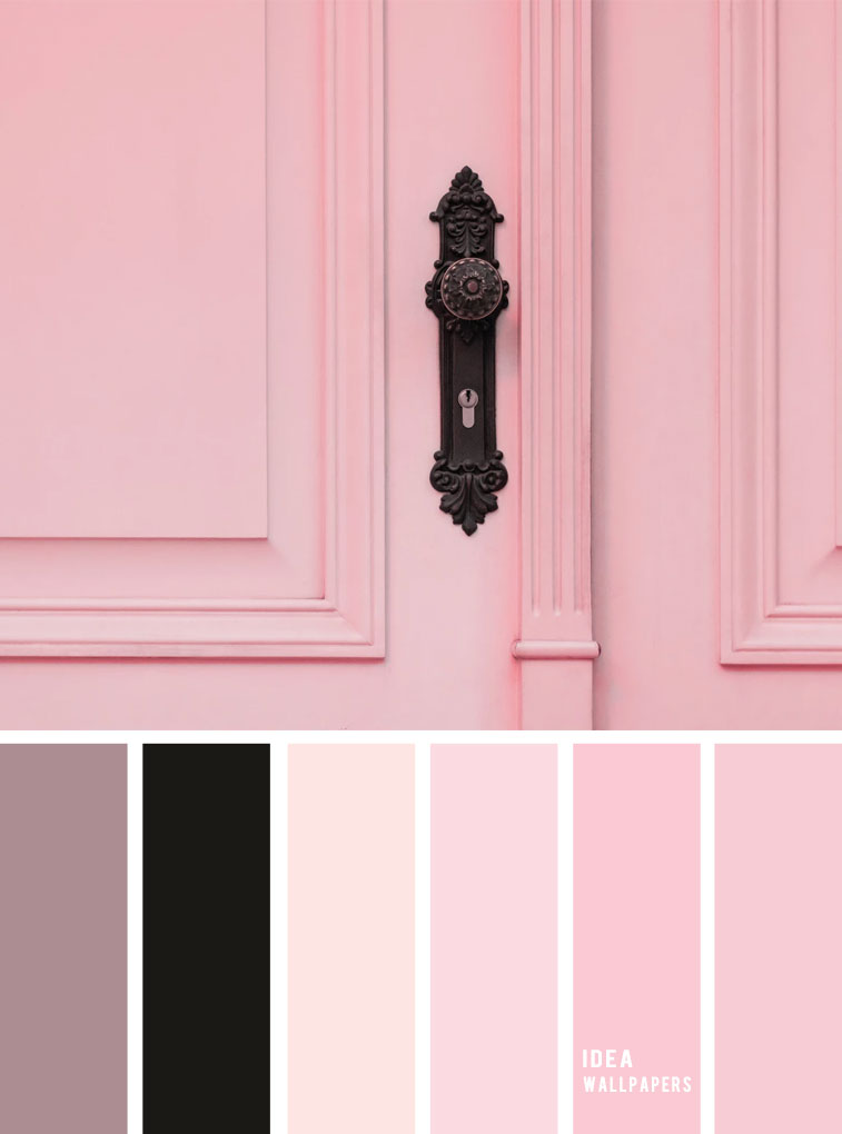 Pink door inspired color palette inspiration, black and pink color scheme , color palette #color #colors #colorpalette