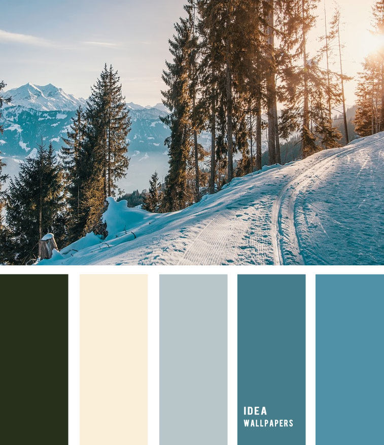Winter color palette - Blue teal winter Color Palette, color palette , winter color palette, blue and grey , grey color palette #pantone #color