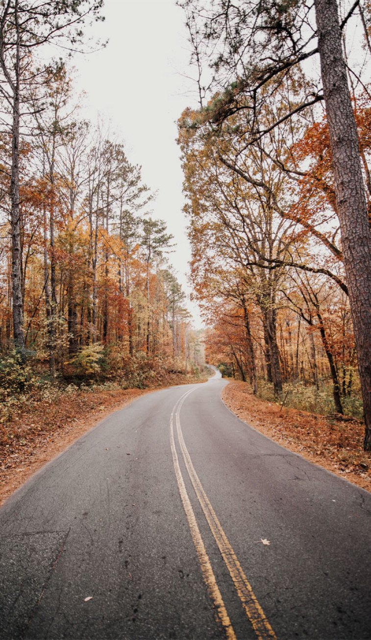 Beautiful Autumn Road Idea Wallpapers Iphone Wallpapers