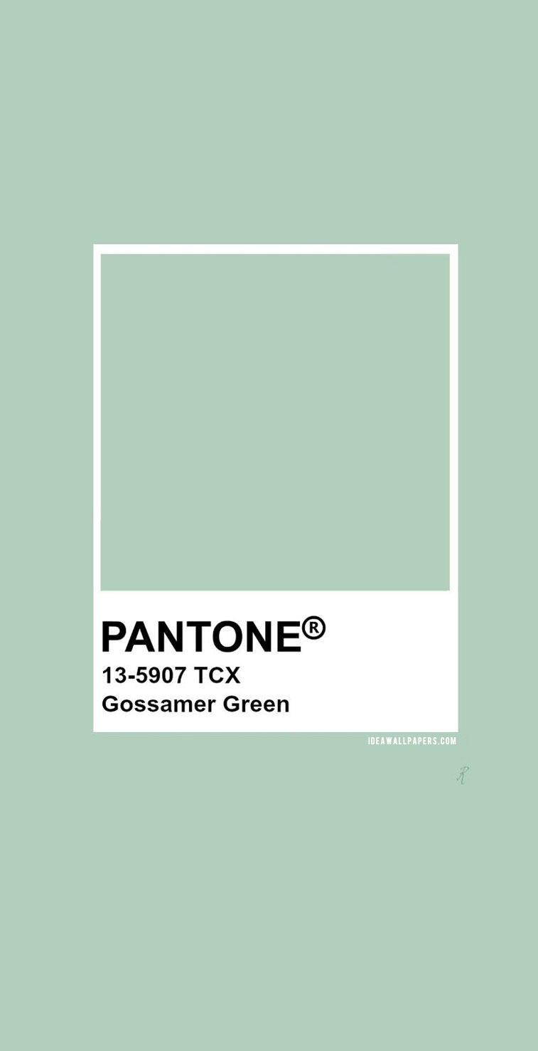 Pantone Gossamer Green : Pantone 13-5907 color #pantone #color