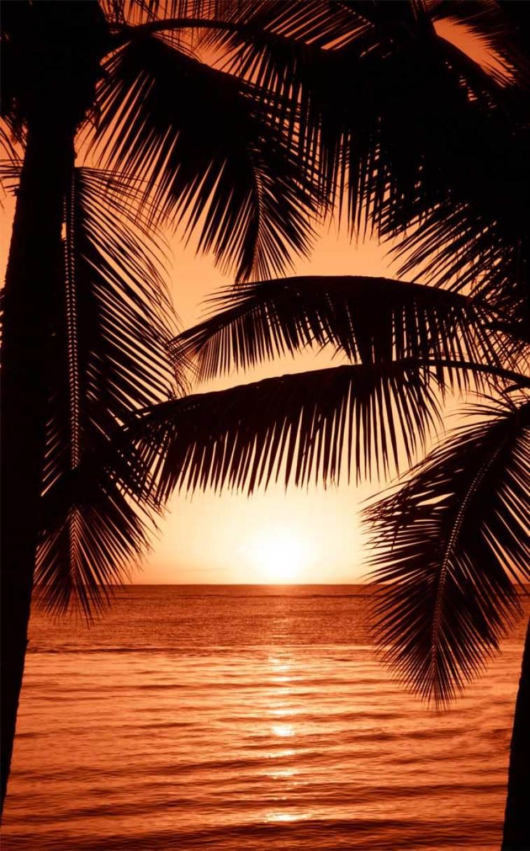 100 Beautiful and romantic sunset photos #sunset #beach