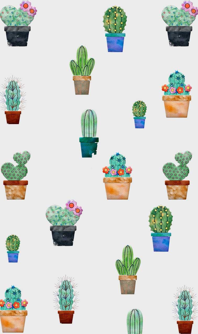 Cute Cactus Illustration #cactus #wallpaper