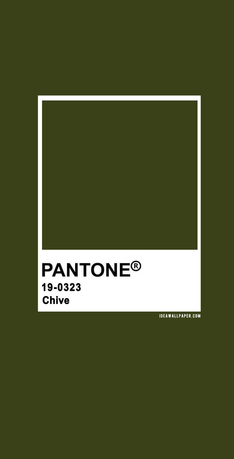 Pantone 2020 Spring/Summer : Chive 19-0323, pantone 2020, chive pantone color, pantone color #colors