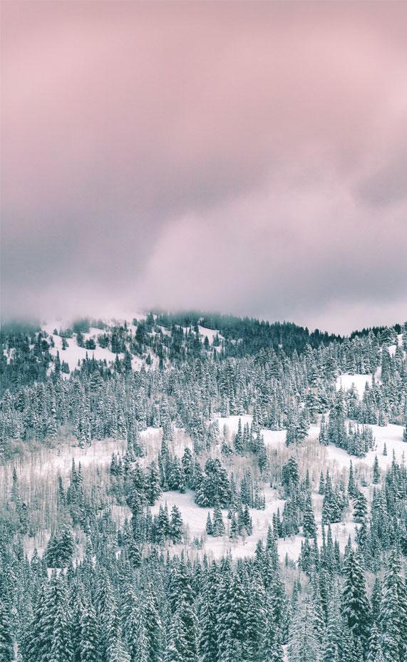 winter iphone wallpaper, iphone wallpaper, winter , snow, iphone wallpaper iphone 11, winter background for iphone #iphonewallpaper