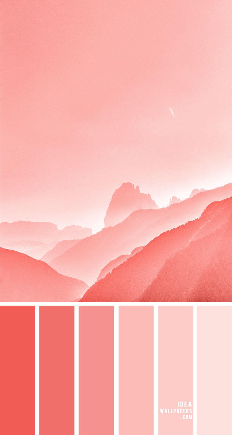 #colors pink coral color palette, coral hued, coral hues, color palette, colors , mood board, coral color palette