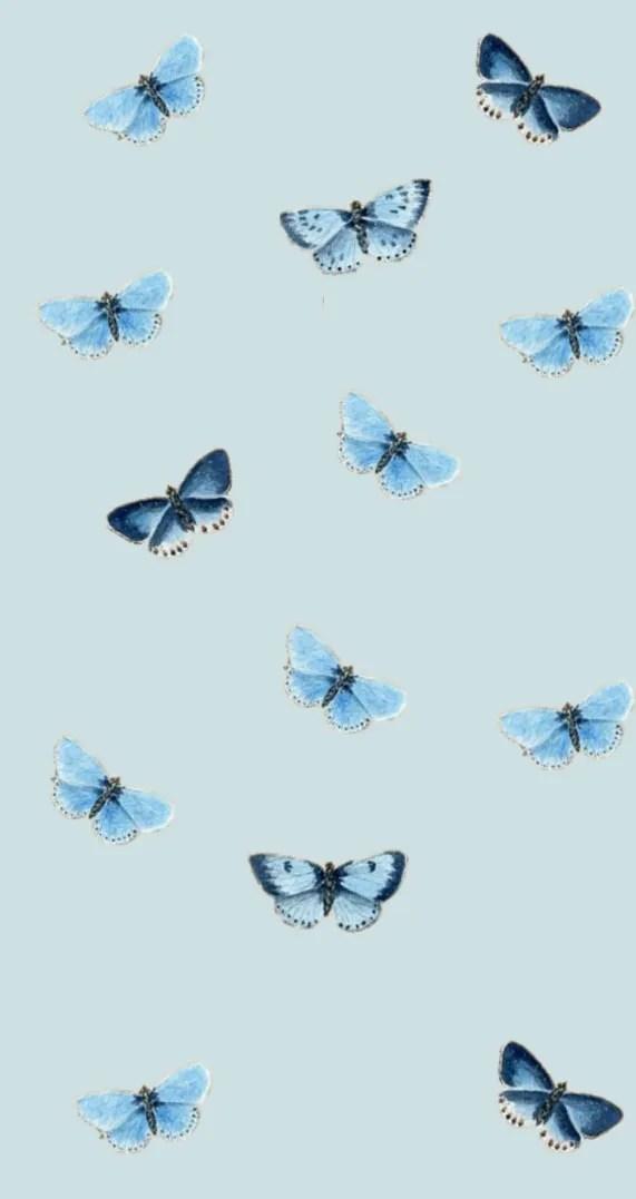 Blue Butterflies Iphone Wallpaper Idea Wallpapers Iphone Wallpapers Color Schemes