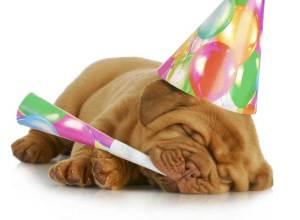 tillykke med fødselsdagen