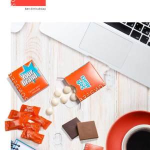 Bergmos Katalog 2019