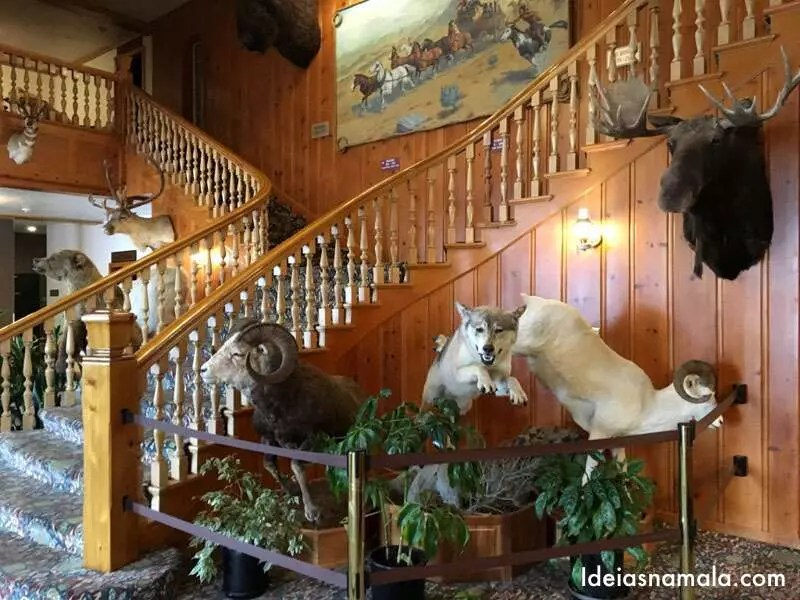 Onde ficar em Yellowstone