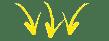 seta-amarela
