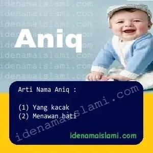 arti nama Aniq