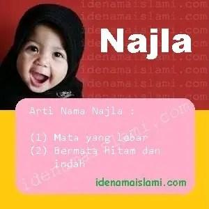 arti nama Najla