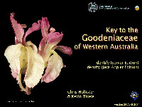Goodeniaceae_thm