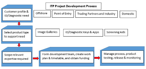 ITP Lucid key project development process