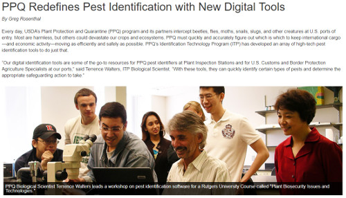 PPQ Pest Identification Article