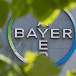 L'allemand Bayer et l'Université de Tel Aviv testent des médicaments sur des cœurs imprimés en 3D