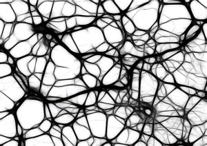 Neurons discussing God's existence.