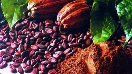 Enough-cocoa-for-chocolate-makers-this-year-but-price-hike-looms-ICCO_strict_xxl