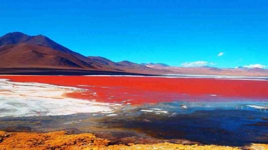 Laguna-Colorada-Beautiful